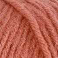 Picture of Super Saver / Solid - Coral - NIL STOCK