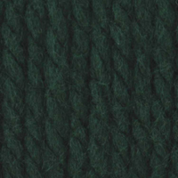 Picture of Softee Chunky - Dark Green - NIL STOCK